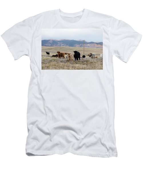 Men's T-Shirt (Slim Fit) featuring the photograph Shaggy-coated Cattle Near Jefferson by Carol M Highsmith