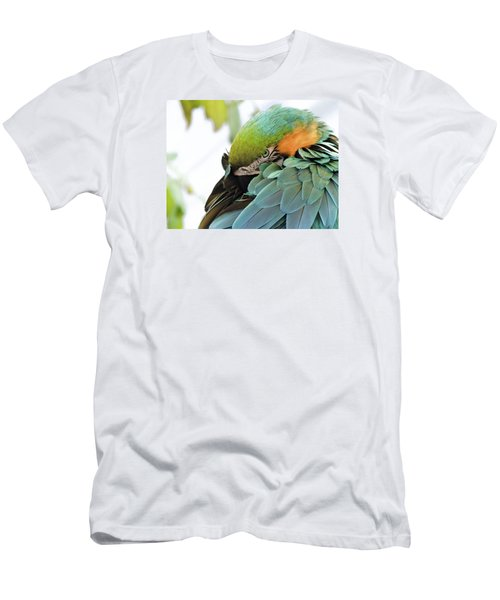 Shy Macaw Men's T-Shirt (Slim Fit) by Penny Lisowski