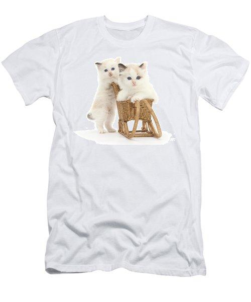 Sledging Kittens Men's T-Shirt (Athletic Fit)