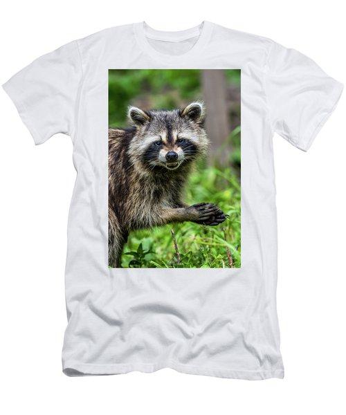 Smiling Raccoon Men's T-Shirt (Slim Fit) by Paul Freidlund