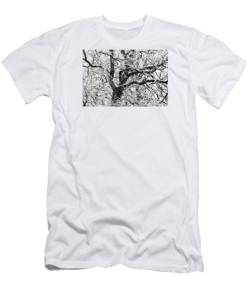 Snowy Oak Men's T-Shirt (Athletic Fit)