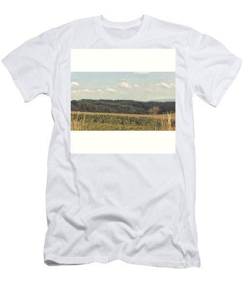 #sonnenblumenfeld #felder #sommer2015 Men's T-Shirt (Athletic Fit)