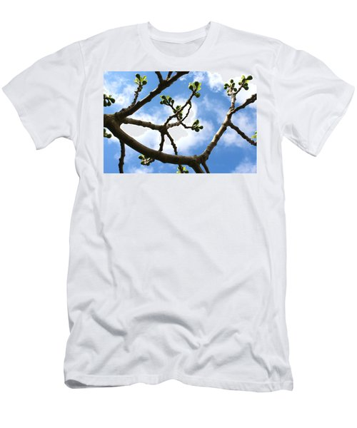 Fig Tree In Spring Men's T-Shirt (Athletic Fit)
