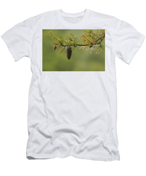 Spring Rain And Pinecone Men's T-Shirt (Slim Fit) by Michael Eingle