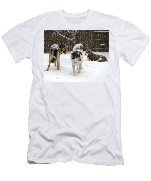 Spring Snow #2 Men's T-Shirt (Athletic Fit)
