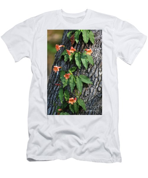 Men's T-Shirt (Slim Fit) featuring the photograph Vinery by Skip Willits