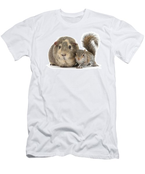 Squirrel And Guinea Men's T-Shirt (Athletic Fit)
