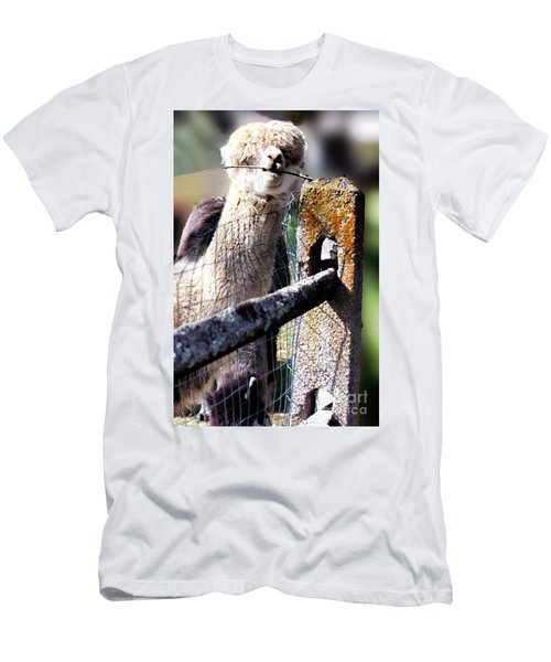 Men's T-Shirt (Slim Fit) featuring the photograph Sticks Taste Good by Polly Peacock