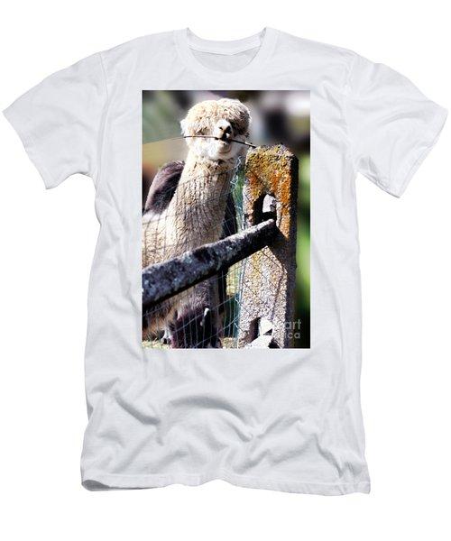 Sticks Taste Good Men's T-Shirt (Slim Fit) by Polly Peacock