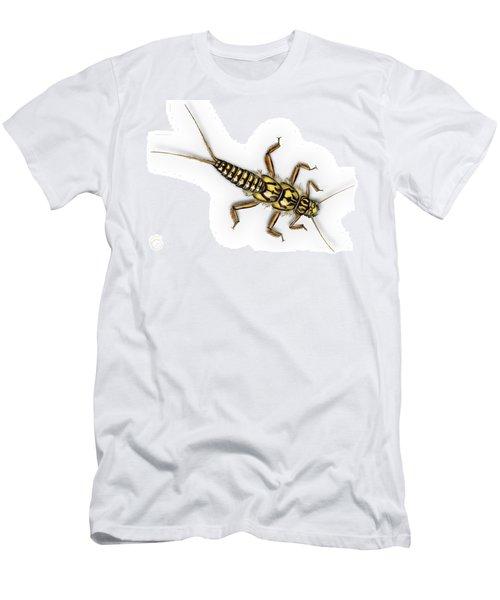 Stonefly Larva Nymph Plecoptera Perla Marginata - Steinflue -  Men's T-Shirt (Athletic Fit)
