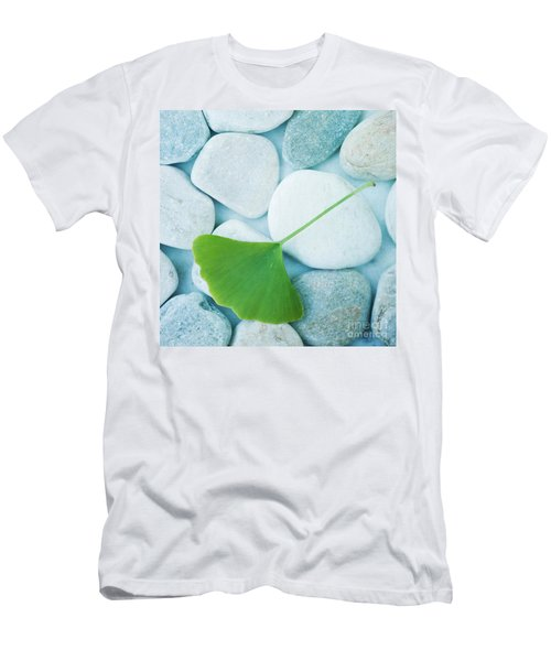 Stones And A Gingko Leaf Men's T-Shirt (Athletic Fit)
