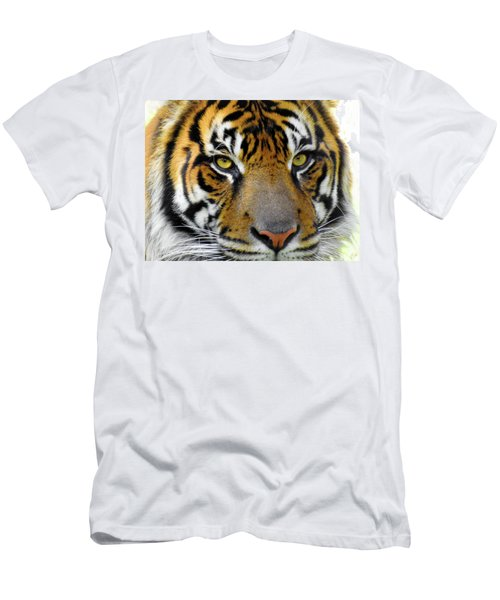 Stripes, No. 26 Men's T-Shirt (Athletic Fit)