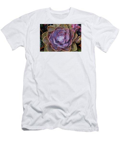 Succulent Star Men's T-Shirt (Slim Fit)