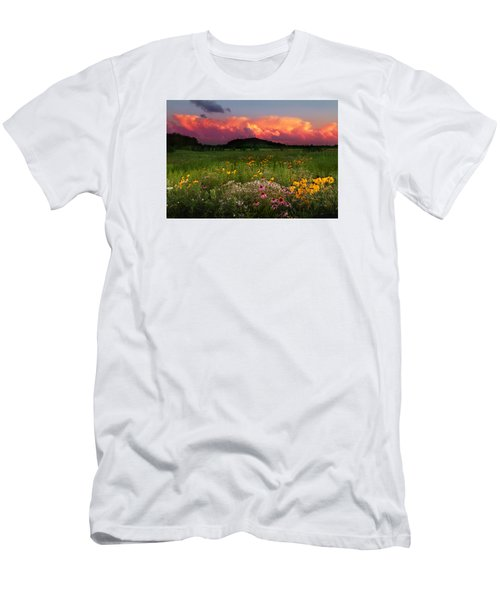 Summer Majesty Men's T-Shirt (Slim Fit) by Rob Blair