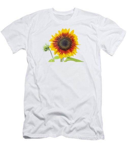 Sunflower 2018-1 Men's T-Shirt (Athletic Fit)