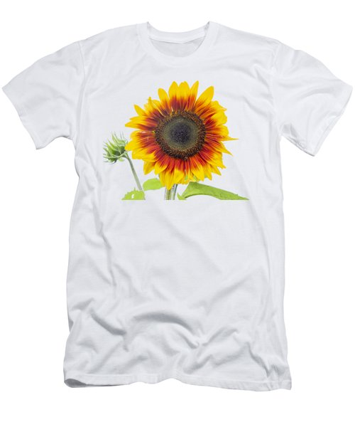 Sunflower 2018-1 Men's T-Shirt (Athletic Fit)