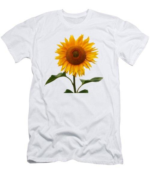 Sunflower On White Men's T-Shirt (Athletic Fit)