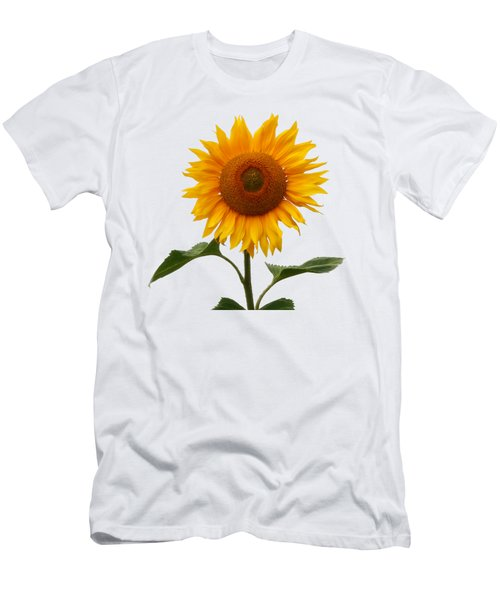 Sunflower On White Men's T-Shirt (Athletic Fit)