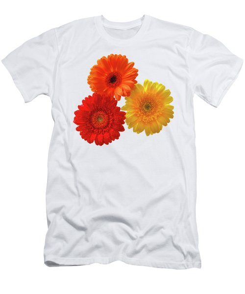 Sunny Gerbera On White Men's T-Shirt (Athletic Fit)