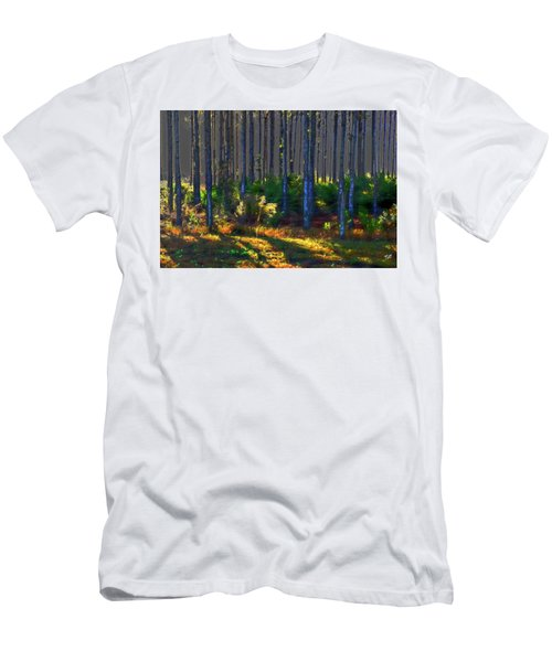 Sunrise On Tree Trunks Men's T-Shirt (Athletic Fit)