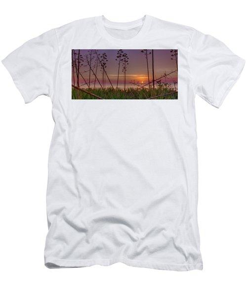Sunrise Palm Blooms Men's T-Shirt (Athletic Fit)