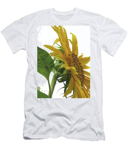 Sunshine In The Garden 25 Men's T-Shirt (Athletic Fit)
