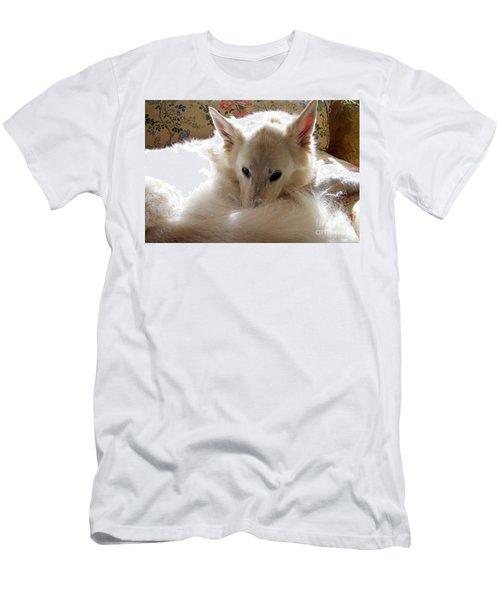 Sweetie Pie Men's T-Shirt (Athletic Fit)