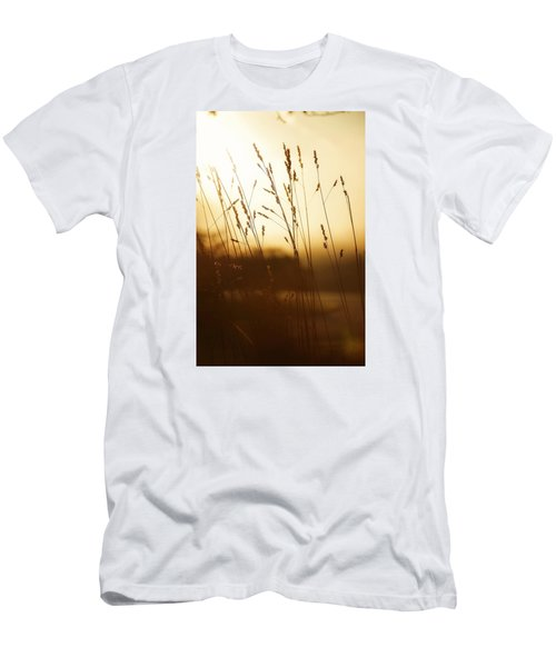 Tall Grass In The Morning Men's T-Shirt (Slim Fit) by Nikki McInnes