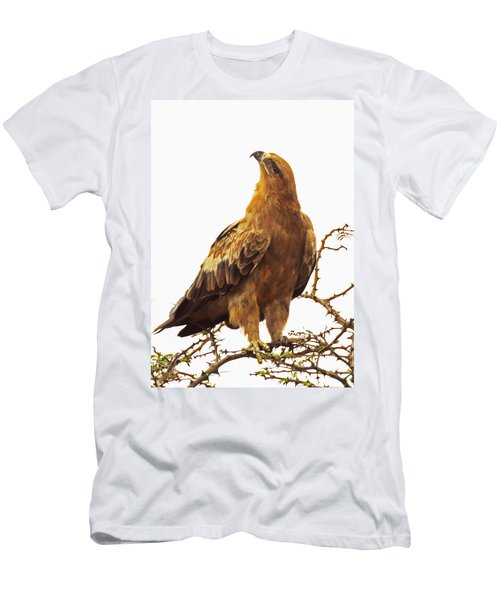 Tawny Eagle Men's T-Shirt (Athletic Fit)