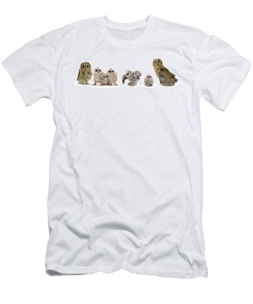 Tawny Owl Family Men's T-Shirt (Athletic Fit)