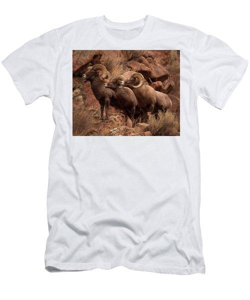 The Boys Men's T-Shirt (Athletic Fit)