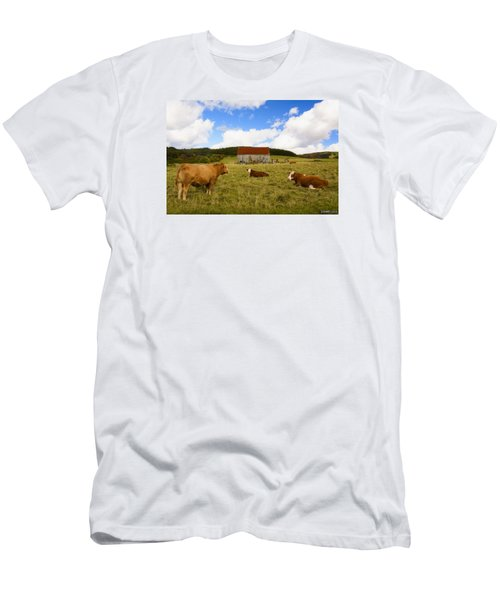 The Cows Of Mabou Men's T-Shirt (Slim Fit) by Ken Morris