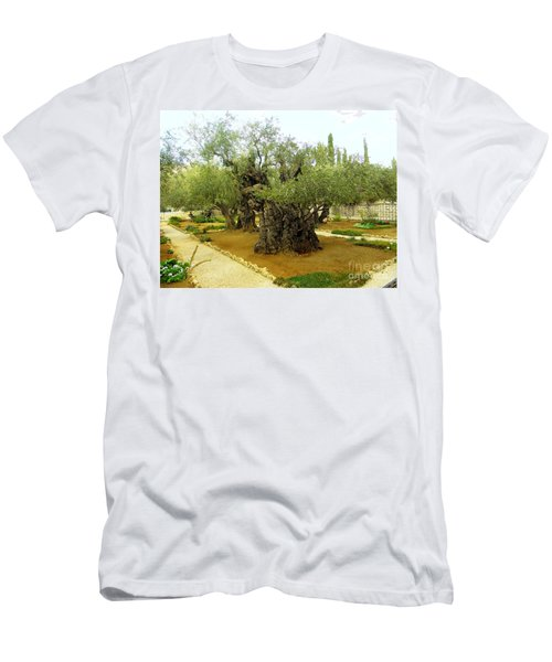 The Garden Of Gethsemane Men's T-Shirt (Athletic Fit)