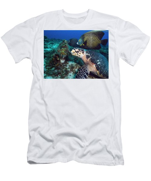The Green Turtle And The Angelfish Men's T-Shirt (Athletic Fit)