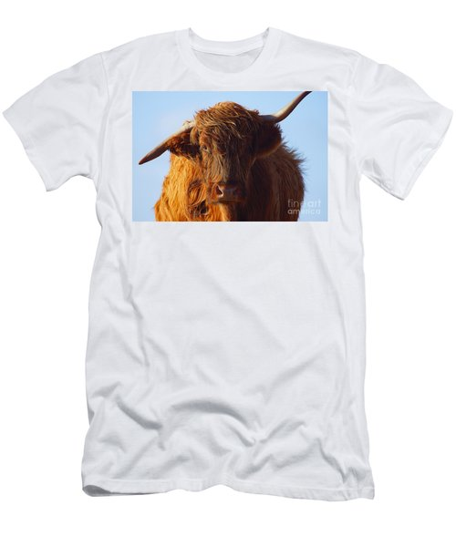 The Highland Cow Men's T-Shirt (Athletic Fit)
