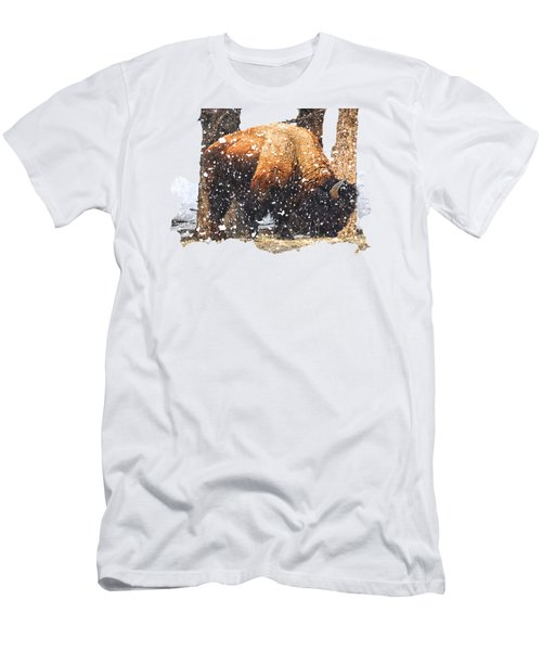 The Majestic Bison Men's T-Shirt (Slim Fit) by Image Takers Photography LLC - Carol Haddon