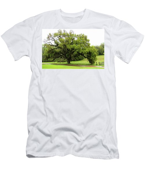 The Perfect Tree Men's T-Shirt (Athletic Fit)