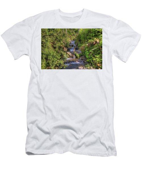 The Quinault Stream 2 Men's T-Shirt (Slim Fit) by Richard J Cassato