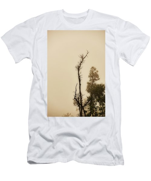 The Trees Against The Mist Men's T-Shirt (Slim Fit) by Rajiv Chopra