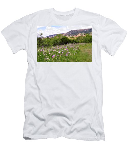 Thistles In The Canyon Men's T-Shirt (Athletic Fit)