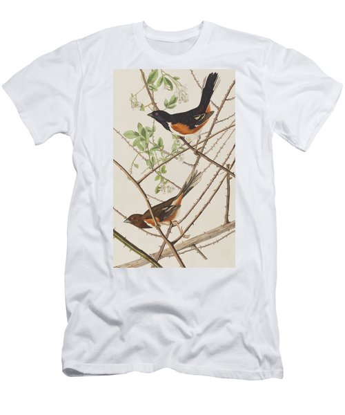 Towhe Bunting Men's T-Shirt (Athletic Fit)