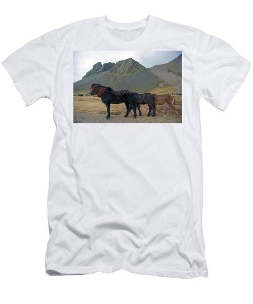 Men's T-Shirt (Athletic Fit) featuring the photograph Tri - Color Icelandic Horses by Dubi Roman