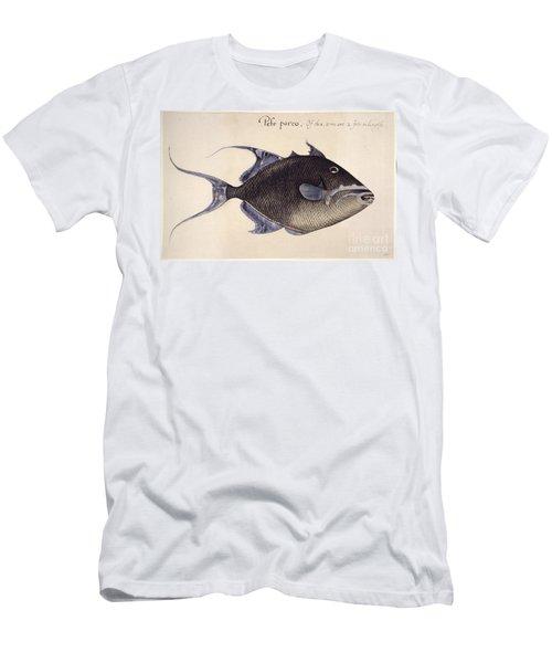 Trigger-fish, 1585 Men's T-Shirt (Athletic Fit)