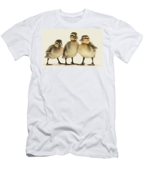 Triple Ducklings Men's T-Shirt (Athletic Fit)