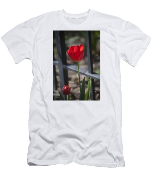 Tulip And Garden Fence Men's T-Shirt (Slim Fit) by Morris  McClung