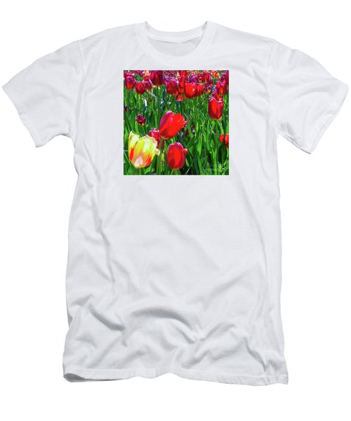 Tulip Garden In Bloom Men's T-Shirt (Athletic Fit)