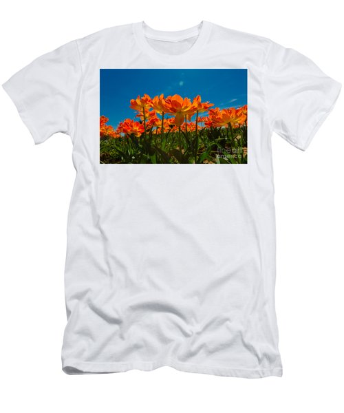 Tulips In The Sun Men's T-Shirt (Athletic Fit)