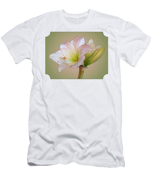 Unfurling Beauty - White Amaryllis With Red Trim Men's T-Shirt (Athletic Fit)