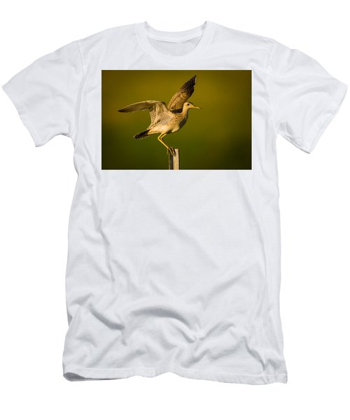 Upland Sandpiper On Steel Post Men's T-Shirt (Athletic Fit)