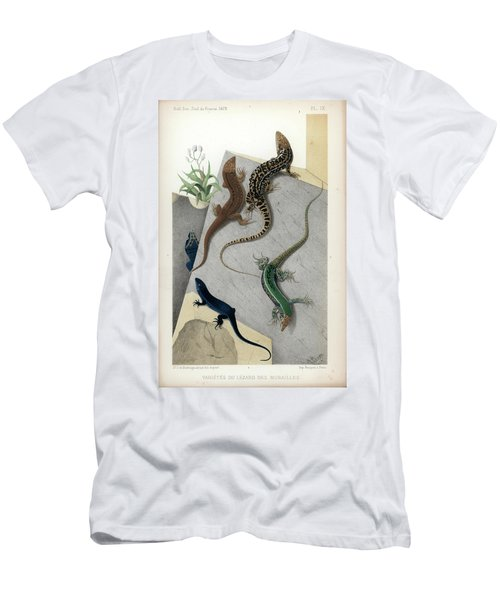 Varieties Of Wall Lizard Men's T-Shirt (Athletic Fit)